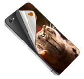 Skin-uri pentru telefoane mobile